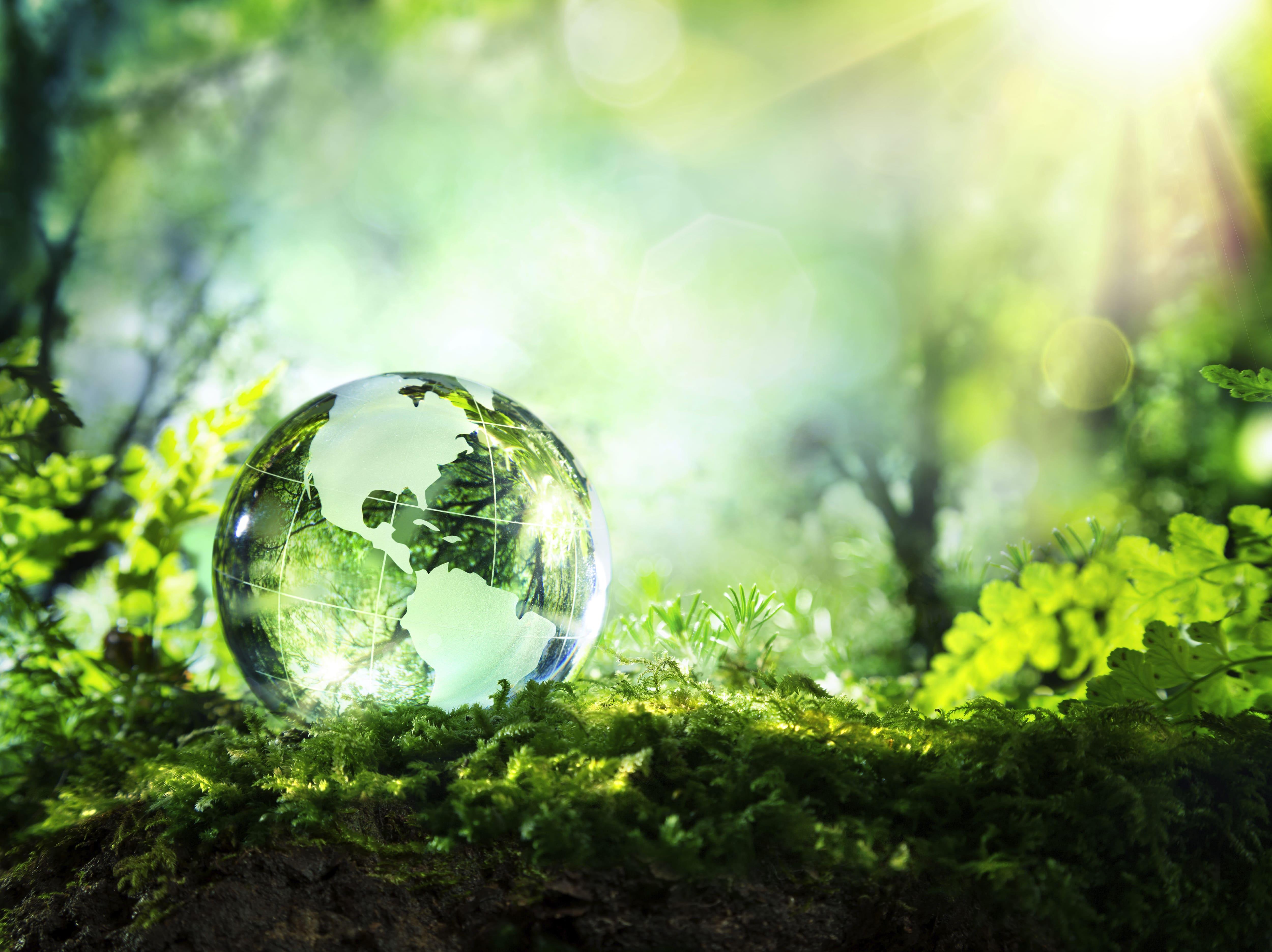 Visuel illustrant le service de recyclage du Groupe Marck.